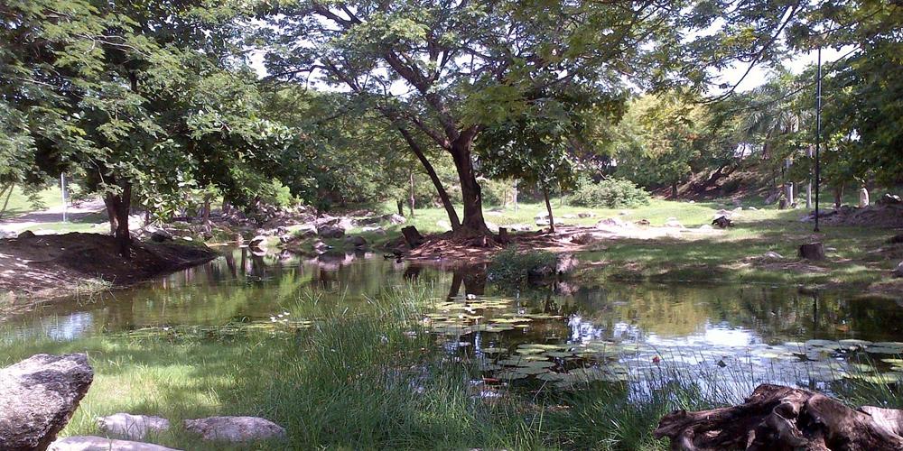 Aquaparque —Voz Abierta