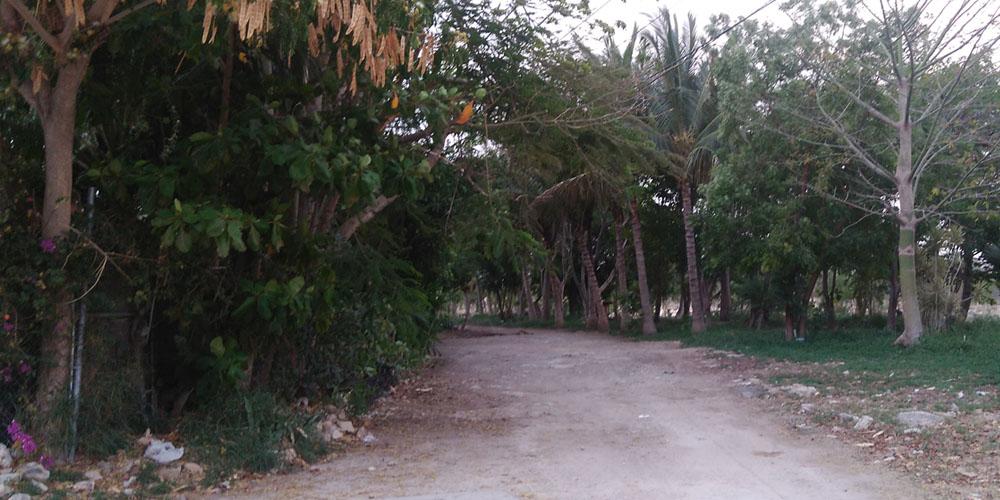 El Charquito, Megaparque —Voz Abierta_0007_IMG_20170427_190556.jpg