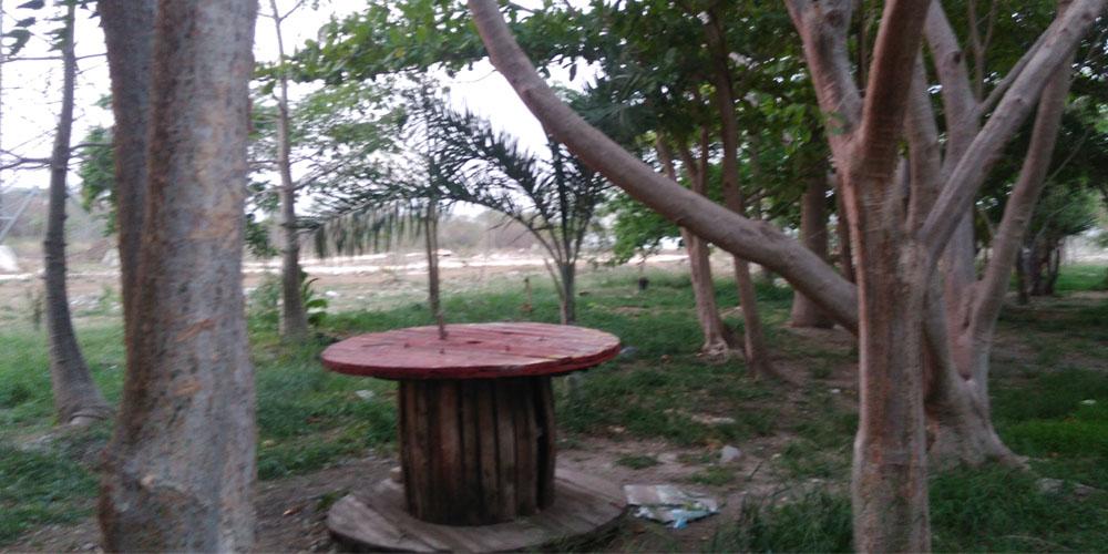 El Charquito, Megaparque —Voz Abierta_0013_IMG_20170427_190317.jpg