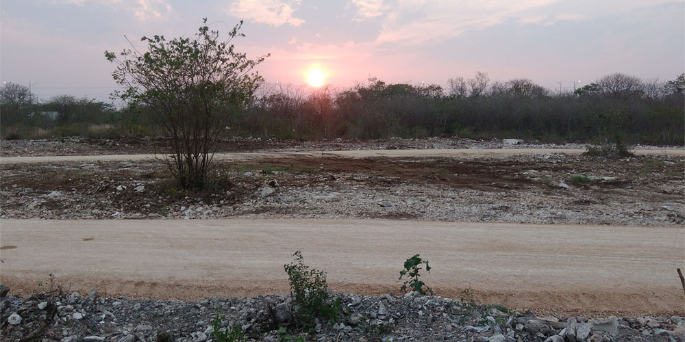 El Charquito, Megaparque —Voz Abierta_0019_IMG_20170427_185958.jpg