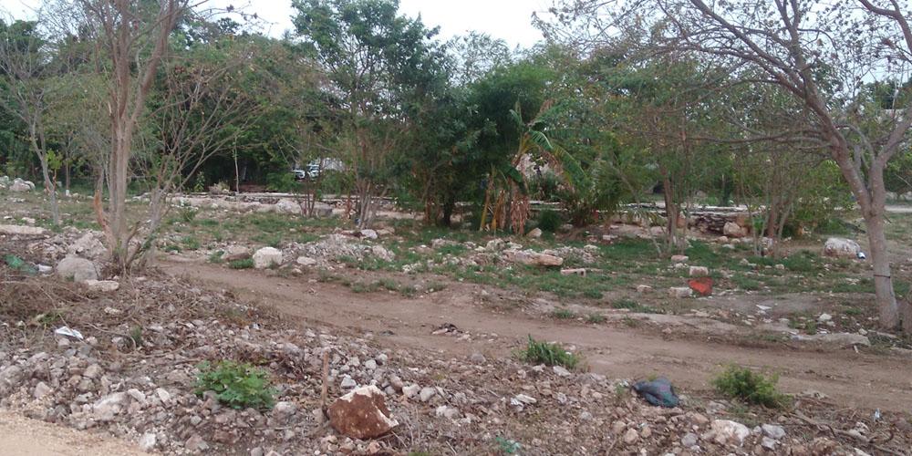 El Charquito, Megaparque —Voz Abierta_0020_IMG_20170427_185914.jpg