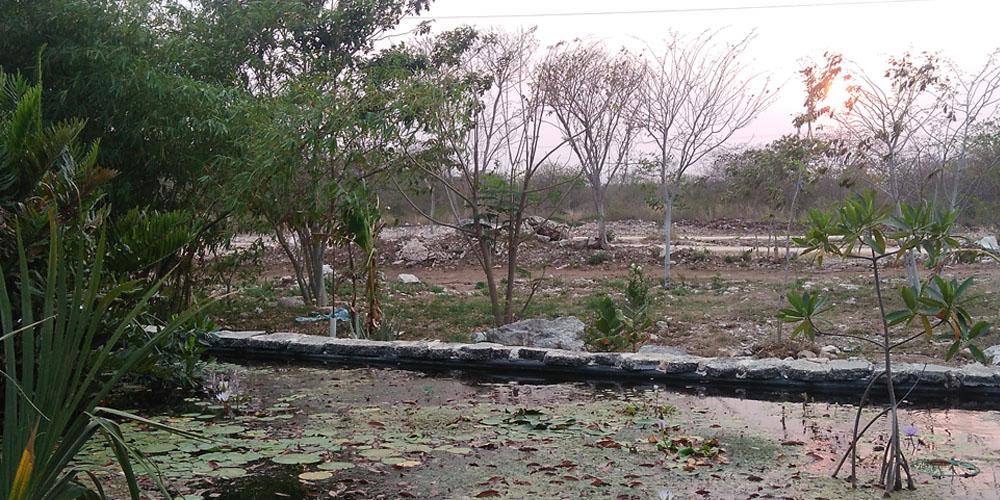 El Charquito, Megaparque —Voz Abierta_0030_IMG_20170427_185537.jpg