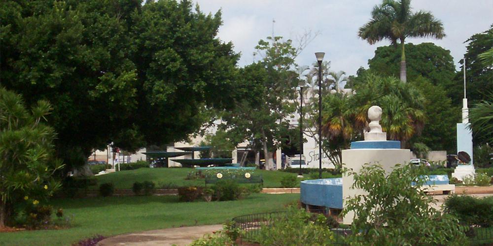 Parque de la Colonia México —Voz Abierta