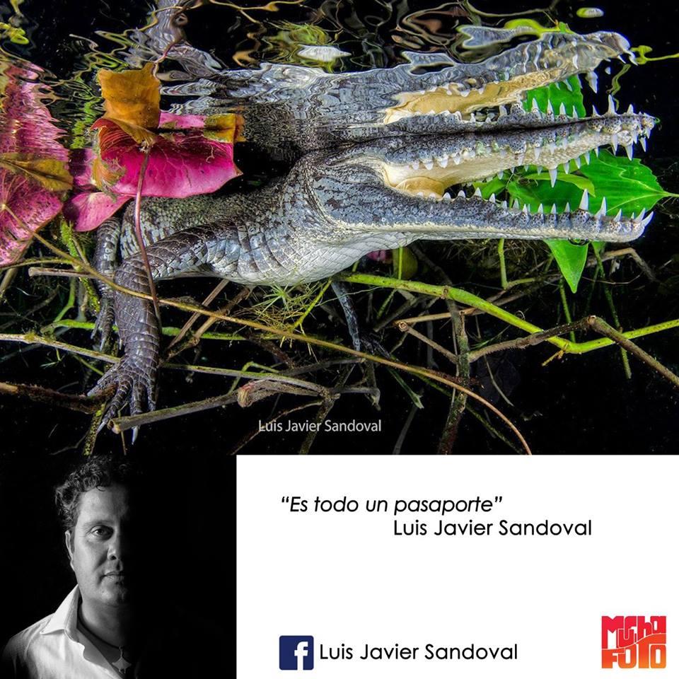 que es la fotografía Luis Javier Sandoval