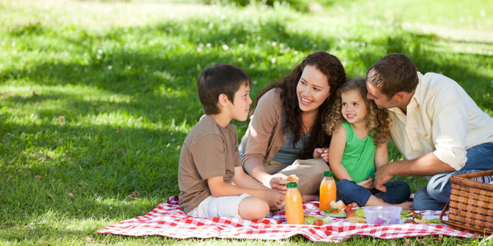 Familiy in the field picknick – Voz Abierta